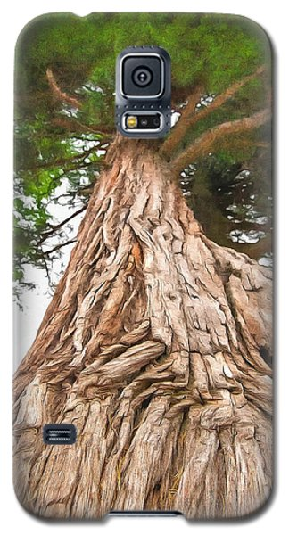 Galaxy S5 Case featuring the photograph Tree Mass by Marion Johnson