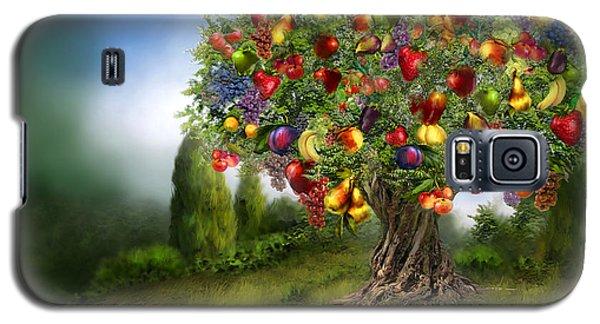 Tree Of Abundance Galaxy S5 Case
