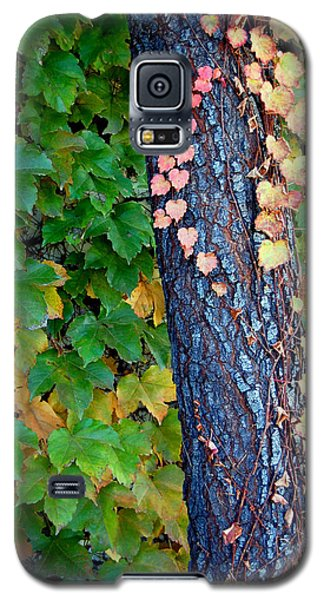 Tree Of Love Galaxy S5 Case