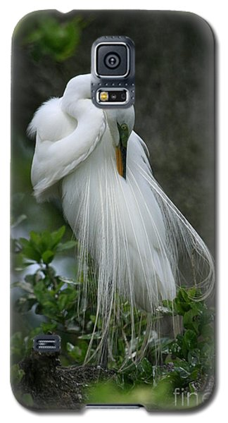 Galaxy S5 Case featuring the photograph Tree Of Plumes by John F Tsumas