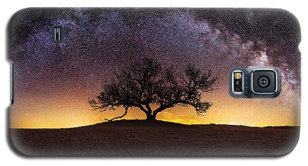 Tree Of Wisdom Galaxy S5 Case