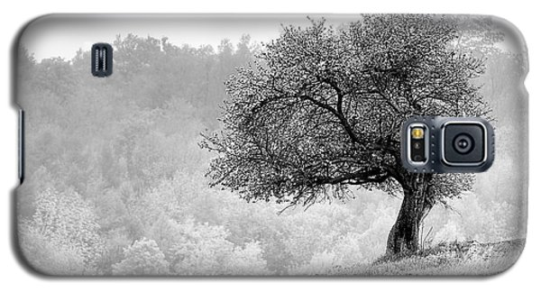 Tree On Marilla Hill Galaxy S5 Case by Don Nieman