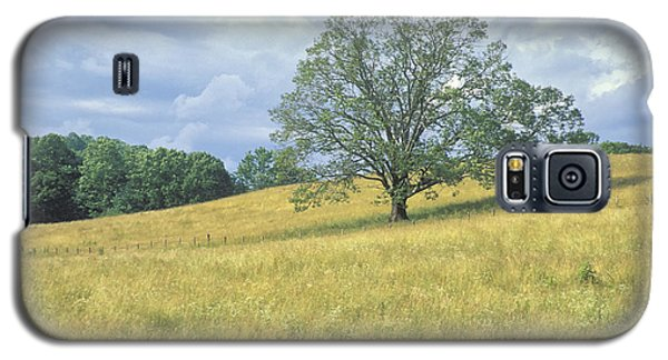Tree On The Hill Galaxy S5 Case