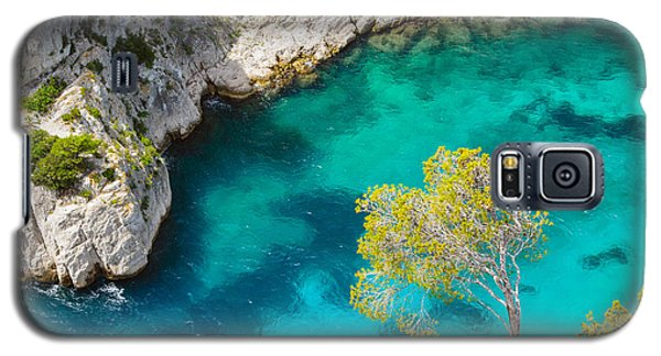 Tree On Turquoise Waters Galaxy S5 Case