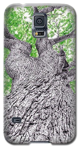 Tree Pen Drawing 4 Galaxy S5 Case