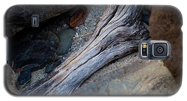 Galaxy S5 Case featuring the photograph Tree Root Anywhere by Carole Hinding