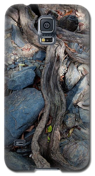 Galaxy S5 Case featuring the photograph Tree Root by Carole Hinding