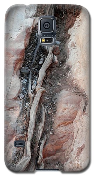 Tree Root Embedded Galaxy S5 Case