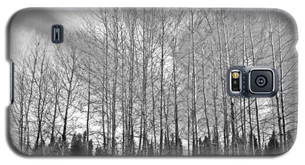 Tree Sweep Galaxy S5 Case