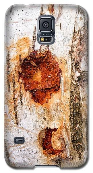 Tree Trunk Closeup - Wooden Structure Galaxy S5 Case