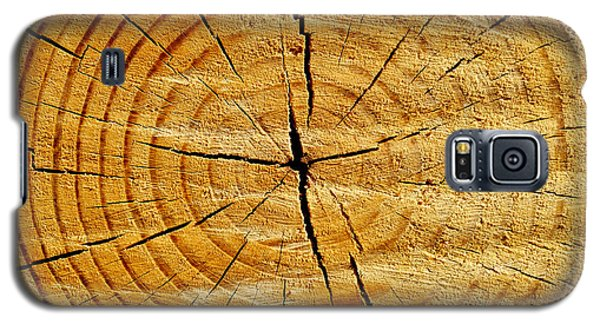 Galaxy S5 Case featuring the photograph Tree Trunk by Fabrizio Troiani