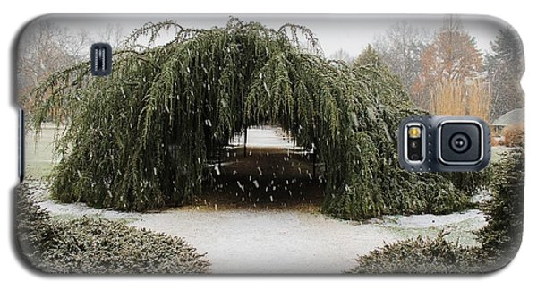 Tree Tunnel Galaxy S5 Case