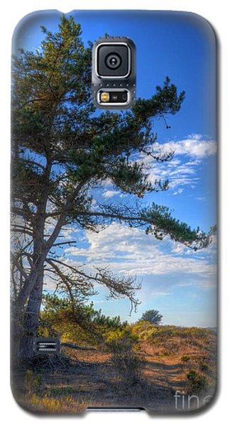 Treebay Galaxy S5 Case