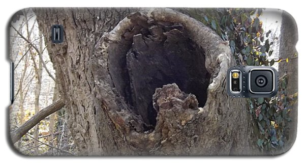 Treehole Galaxy S5 Case
