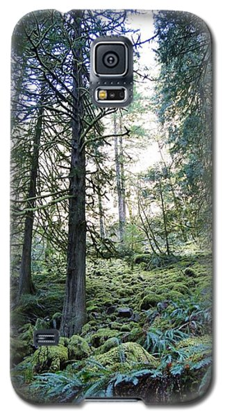 Galaxy S5 Case featuring the photograph Treequility by Athena Mckinzie