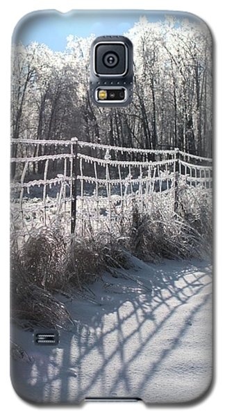 Trees And Fence Galaxy S5 Case by Douglas Pike