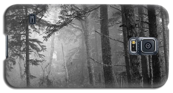 Trees And Fog Galaxy S5 Case