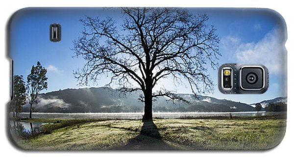 Trees Are Us Galaxy S5 Case by Sean Foster