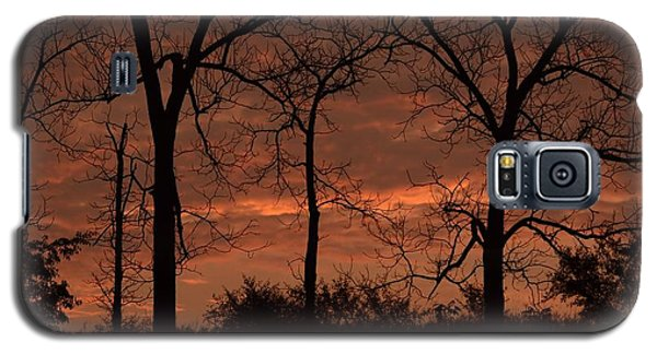Trees At Sunrise Galaxy S5 Case