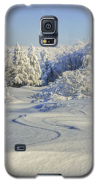 Trees Covered With Snow In A Sunny Winter Day Galaxy S5 Case