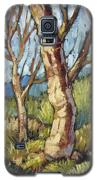 Trees In Spring Galaxy S5 Case