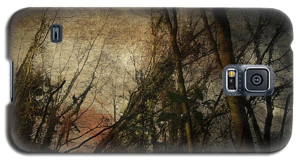 Trees No. 5 Galaxy S5 Case by Andy Walsh