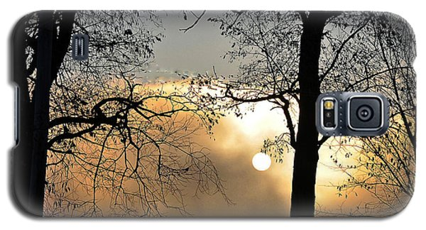 Trees On Misty Morning Galaxy S5 Case