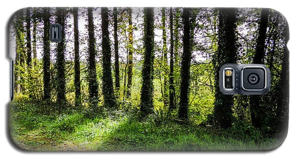 Trees On The Shannon Estuary Galaxy S5 Case