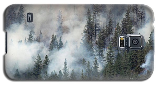Beaver Fire Trees Swimming In Smoke Galaxy S5 Case by Bill Gabbert