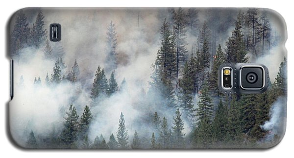 Beaver Fire Trees Swimming In Smoke Galaxy S5 Case