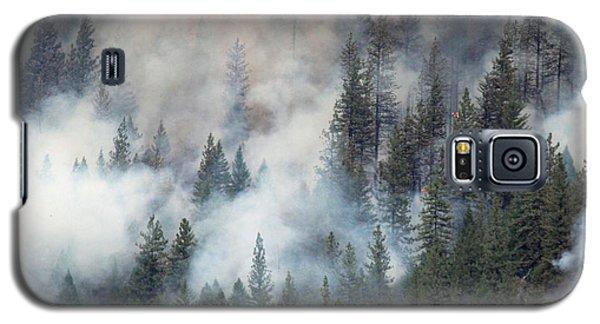 Beaver Fire Trees Swimming In Smoke Galaxy S5 Case
