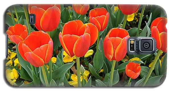 Trendy Tulips  Galaxy S5 Case