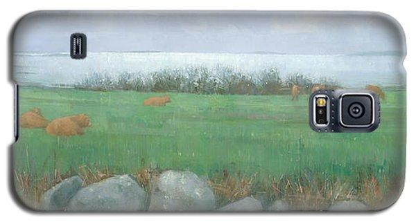 Tresco Cows Galaxy S5 Case