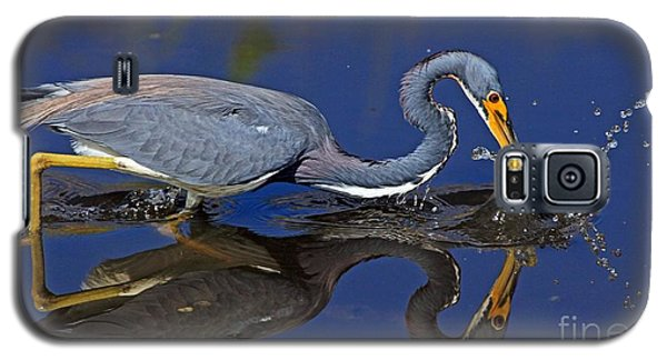 Galaxy S5 Case featuring the photograph Tri Color Heron Splash by Larry Nieland