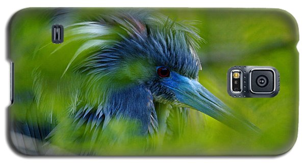 Galaxy S5 Case featuring the photograph Tri-colored Heron Concealed    by John F Tsumas