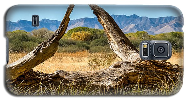 Galaxy S5 Case featuring the photograph Triangle by Beverly Parks