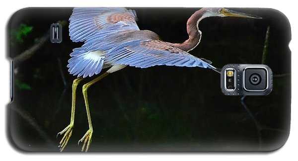 Galaxy S5 Case featuring the photograph Tricolored Heron by Charlotte Schafer