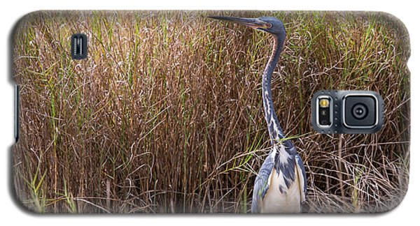 Galaxy S5 Case featuring the photograph Tricolored Heron Peeping Over The Rushes by John M Bailey