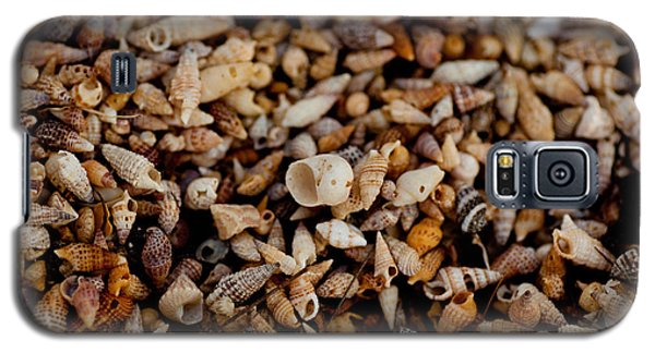 Galaxy S5 Case featuring the photograph Trillion Shells by Carole Hinding