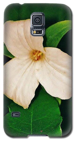 Galaxy S5 Case featuring the photograph Trillium by Daniel Thompson