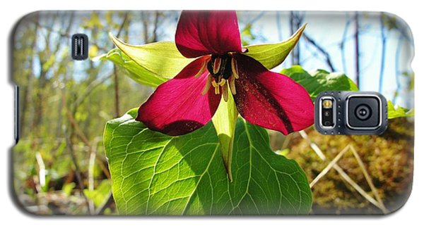 Galaxy S5 Case featuring the photograph Trillium Wild Flower by Sherman Perry