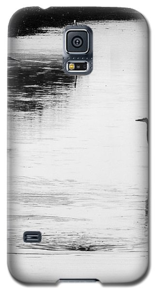 Trilogy - Black And White Galaxy S5 Case by Belinda Greb