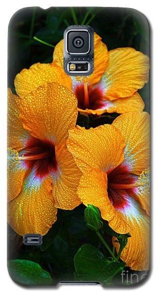 Galaxy S5 Case featuring the photograph Trinity by Aloha Art