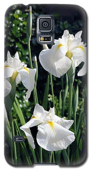 Trio Of White Iris Galaxy S5 Case