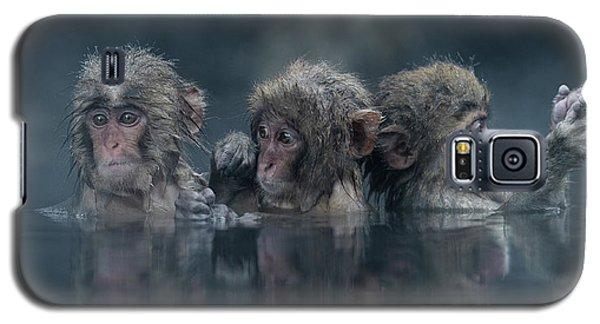 Trio Galaxy S5 Case