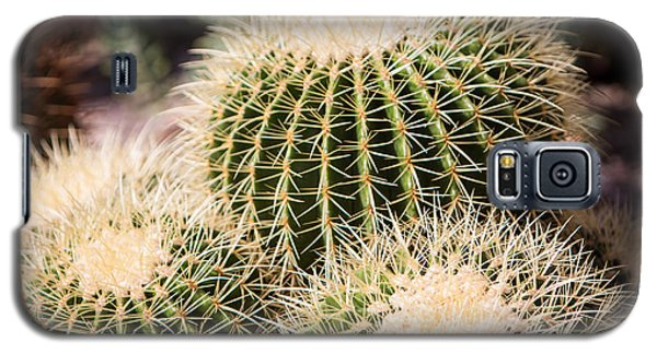 Triple Cactus Galaxy S5 Case