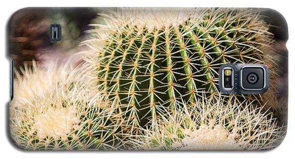 Triple Cactus Galaxy S5 Case