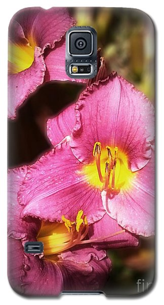 Triple Lilies Galaxy S5 Case