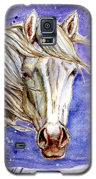 Tripod Wild Stallion Of The Sand Wash Basin Galaxy S5 Case