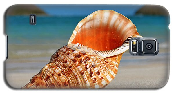 Tritan Trumpet On Lanikai Beach Galaxy S5 Case